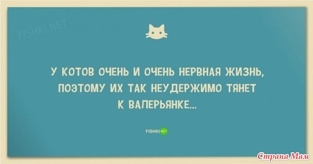 ��������� �������))