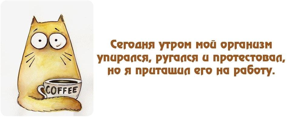 http://st.stranamam.ru/data/cache/2016oct/11/59/20756559_58654.jpg