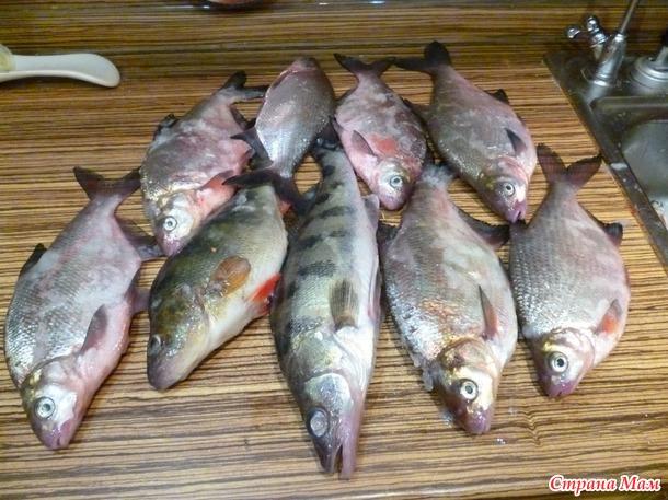 Мой муж рыбак!! Добавила..