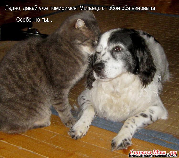 Поздравления для примирения с подругой