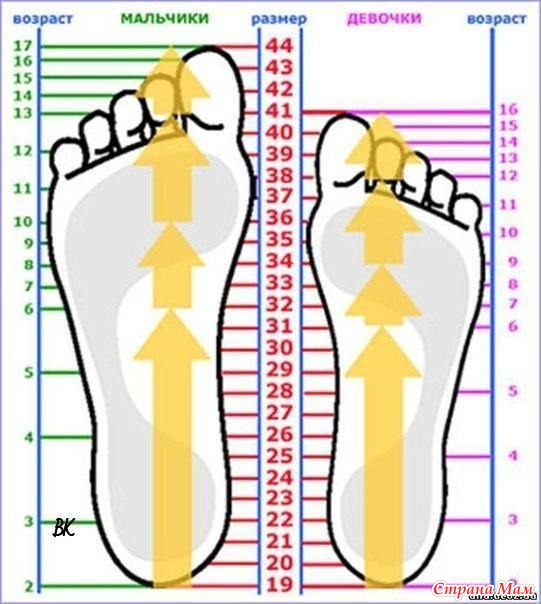 . Шпаргалки для вязания носков