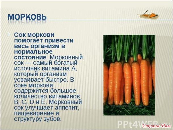 Как влияет морковь на потенцию