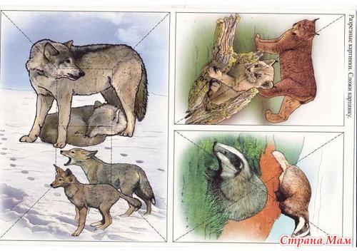 дикие животные разрезные картинки приготовить