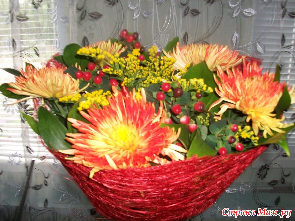 Как красиво посадить красиво цветы в огороде фото