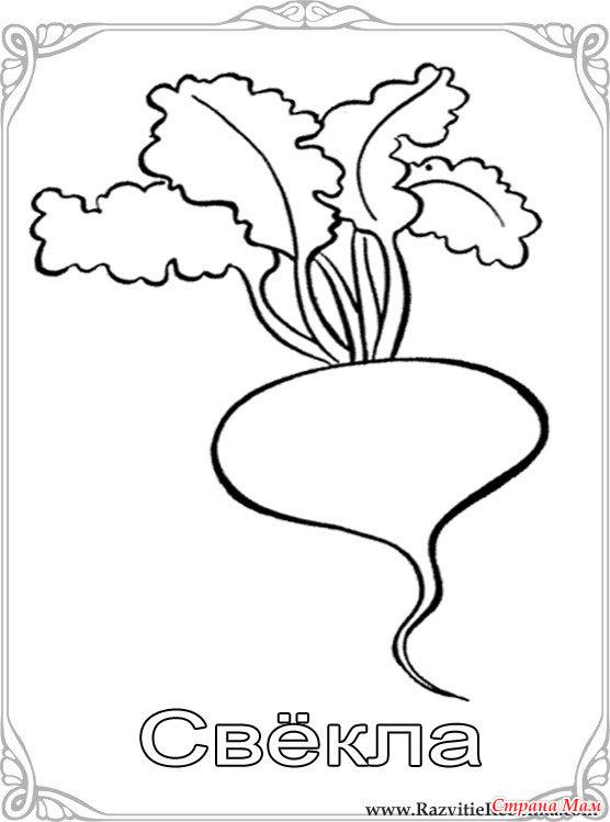 Карточки-раскраски для детей -фрукты и овощи - Страна Мам
