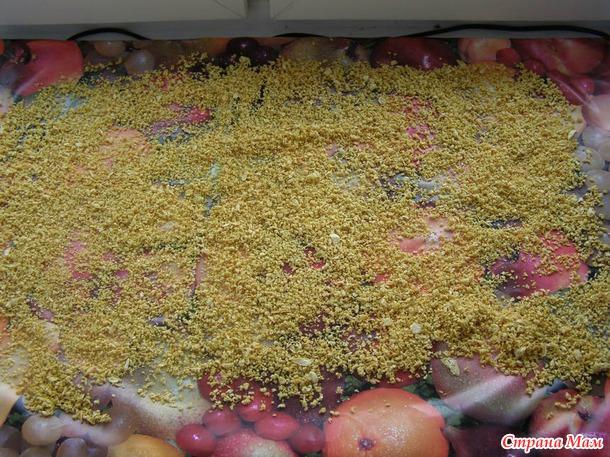 Хваст-Инфракрасная электросушилка для овощей, фруктов и грибов Скатерть-самобранка и настенный обогреватель.