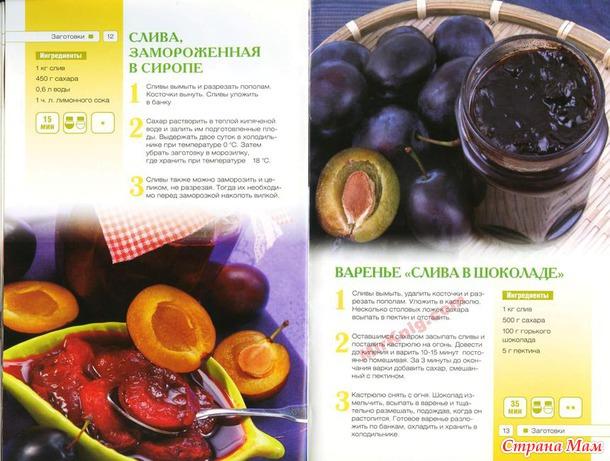 Заготовки из слив и винограда \книга\