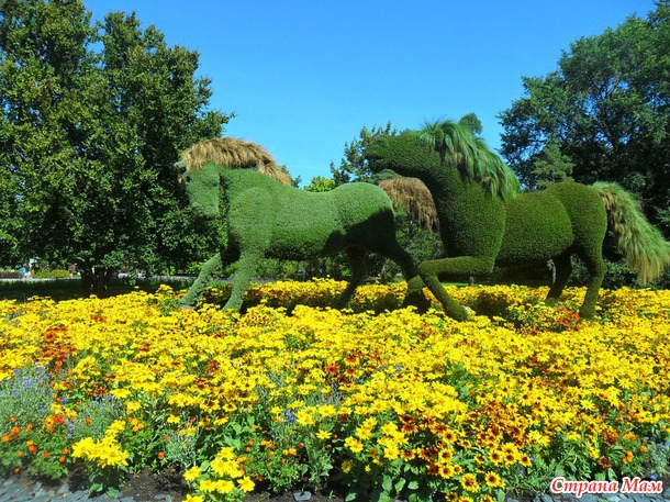 Ботанический сад Монреаля. Международная выставка 2013 скульптур из растений. (Mosaicultures Internationales de Montreal)