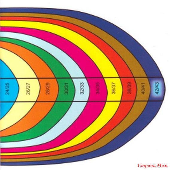 таблицы размеров и шаблон для вязаных носков страна мам