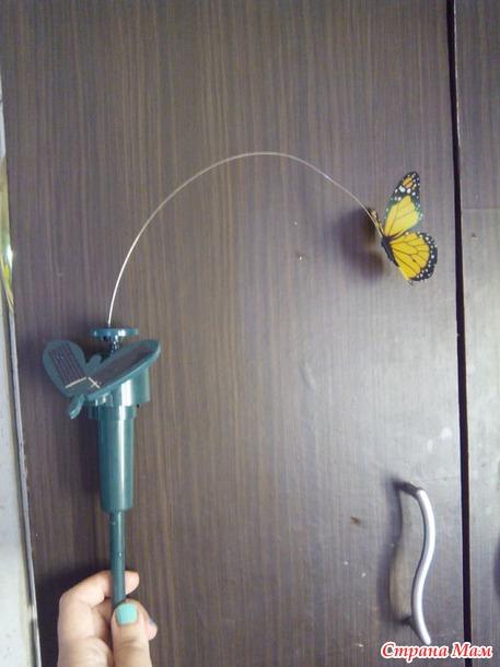 Бабочка на солнечной батарее. +
