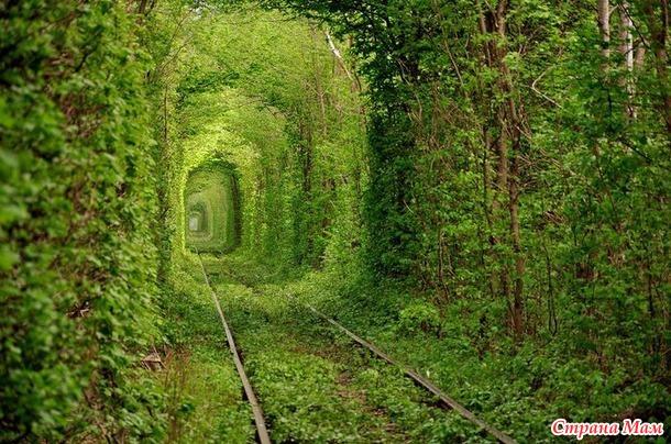 Тоннель любви.
