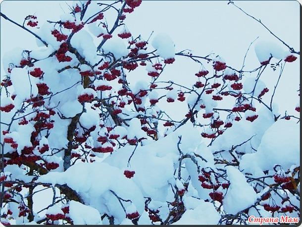 Снежная сказка