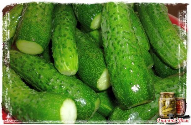 Готовимся к зиме)))  Маринованные огурцы с горчичными зернами.