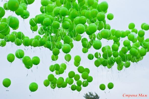 Фестиваль Зеленый.