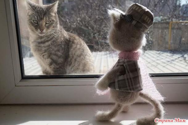Кото- и собако- любы!!!   - обьединяйтесь!!