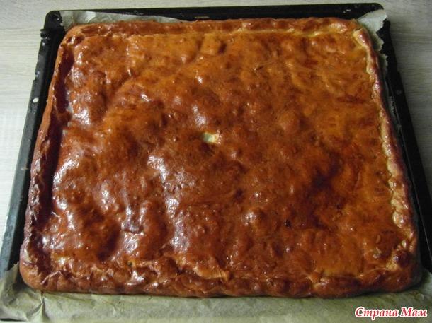 """Челлендж. ДЕНЬ 4-й.  Мясной пирог со """"слойной"""" начинкой."""