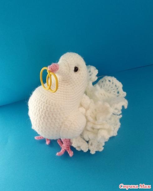 . Свадебный голубь