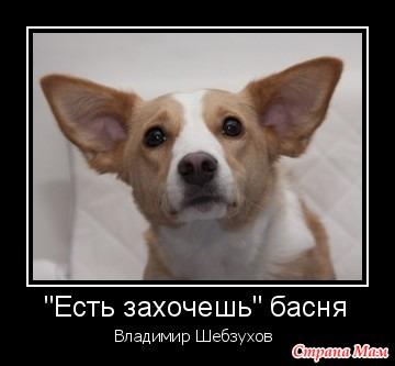 Владимир Шебзухов «Есть захочешь» читает автор