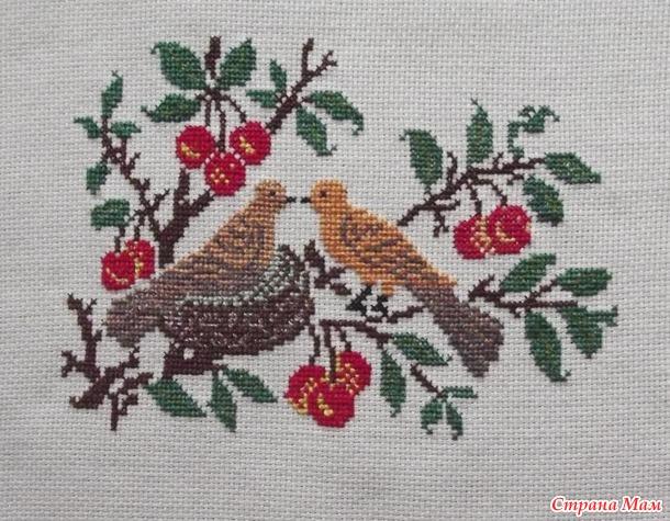 Даёшь птиц по четвергам - 3
