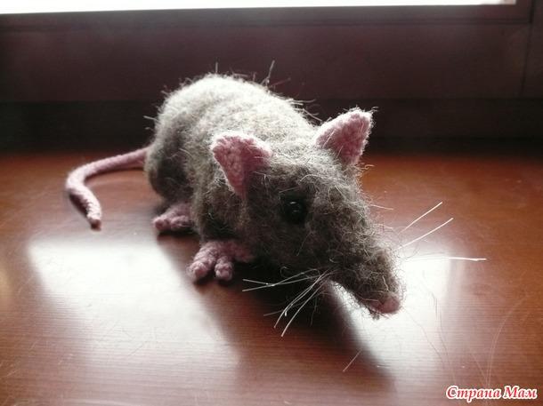 . Осторожно, крыса!