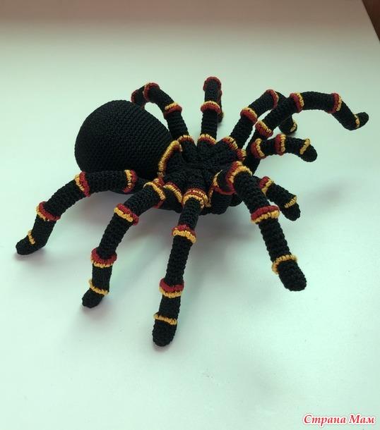 Мексиканский паук-птицеед ползёт к вам! (совместник)