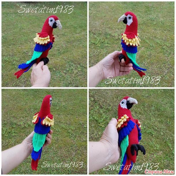 Птица дивной красоты.