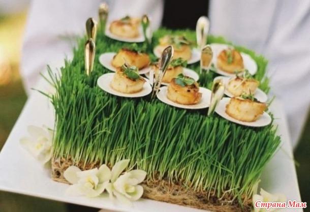 Мини-закуски на «подставке» из живой травы.
