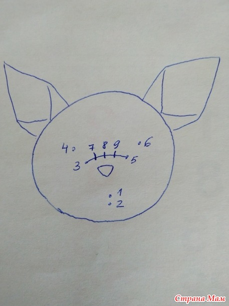 Летучая мышка, мое описание