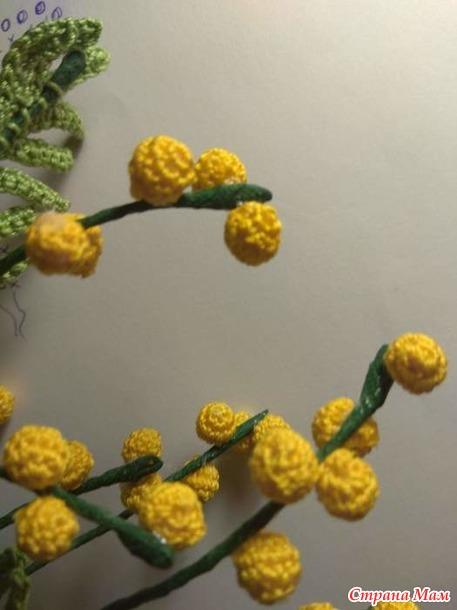 Быстрый Цветочный Марафон. 7 этап Мимоза (заключительный)
