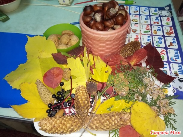 Осенняя корзинка из природных материалов. Мастер-класс