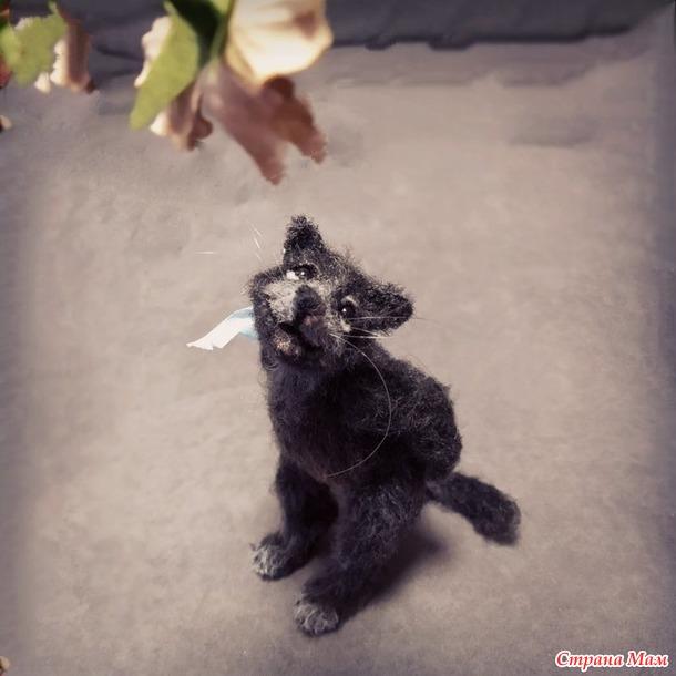 Онлайн. Кот Топотун.