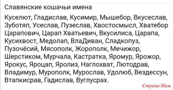 Если вы ищете имя для кота... )))
