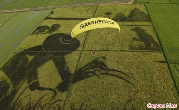 15 сентября - День Рождения Гринпис.