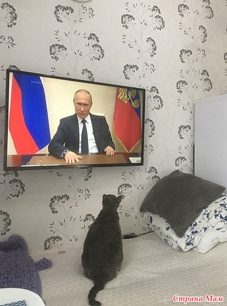 Хакер слушает Путина