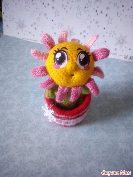 Домашний цветочек на Новогодний конкурс.