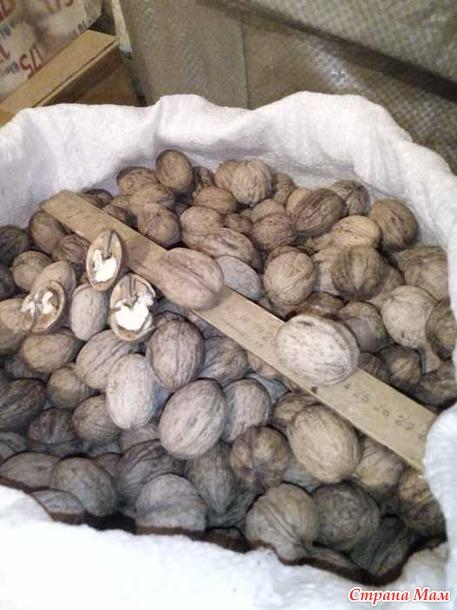 Продам грцкие орехи