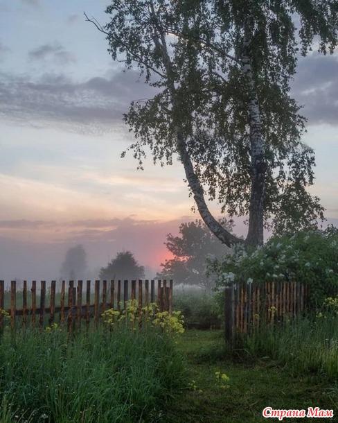 В Крым или в деревню?