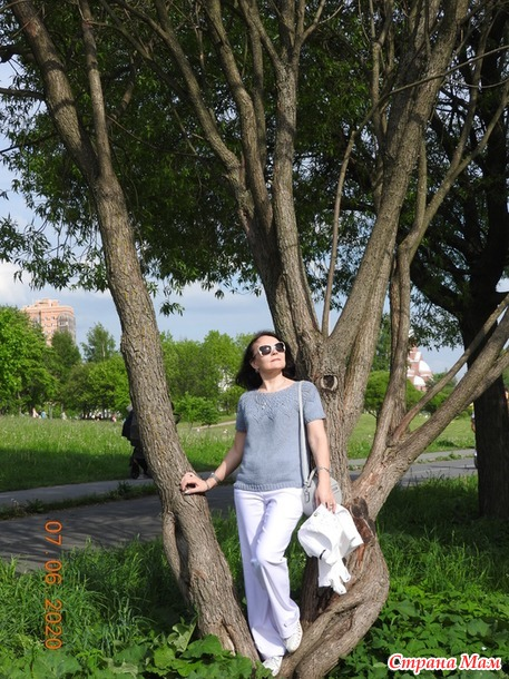 Джемпер Сон-трава по описанию Алены Малевич. Моя версия.