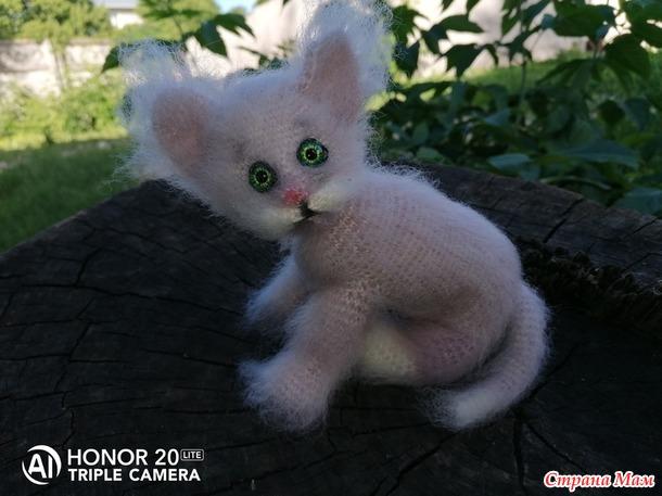Миниатюрный котик.