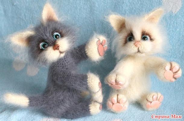 Игривые котята.