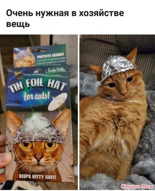 Лучшие товары для Ваших любимцев! Порадуйте своих котиков уникальными товарами!