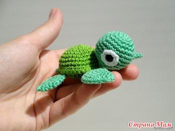 Внимание, черепаха!