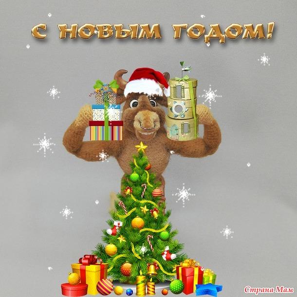 Бык Тамерлан или мужчина моей мечты (новогодний конкурс)