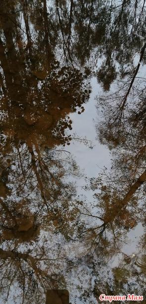 Была я значится в лесу