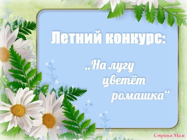"Летний конкурс: ""На лугу цветёт ромашка""."