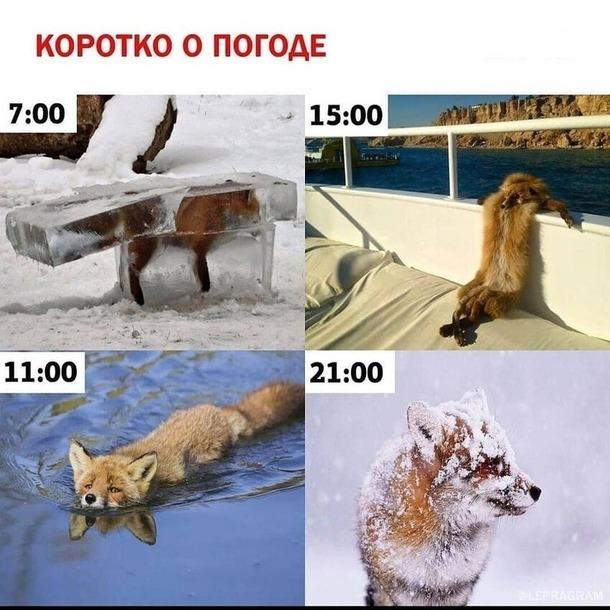 О погоде: актуальненько)