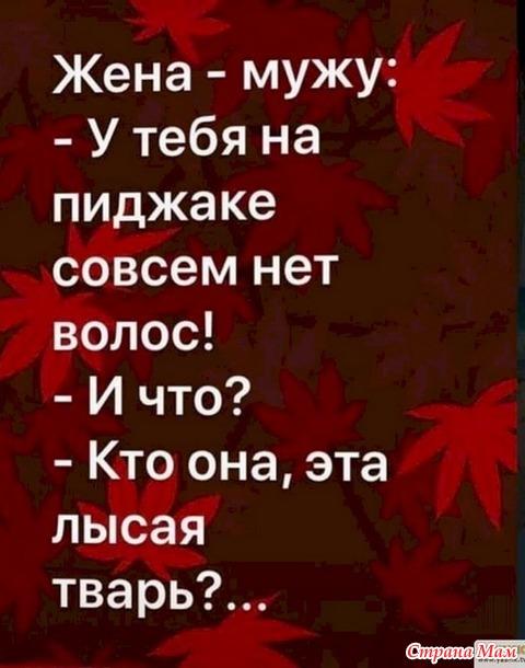 О семейной жизни с юмором. 82