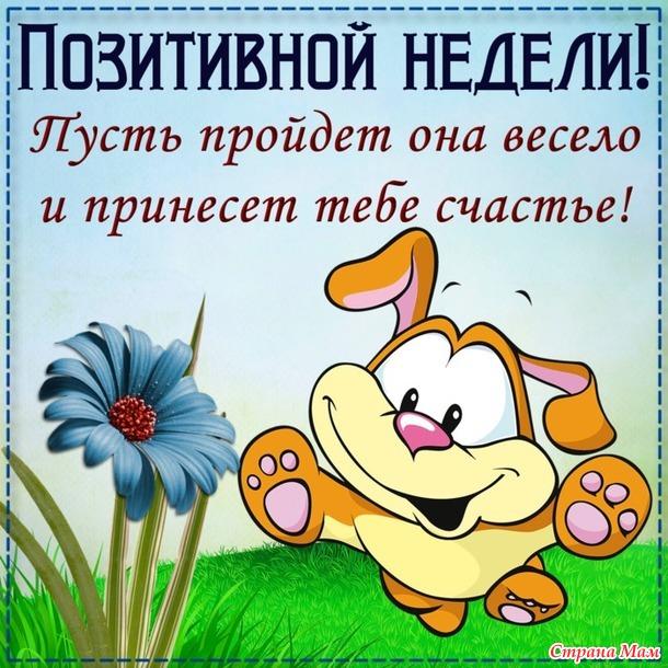 Хвастливая неделька 6 или опять понедельник ))