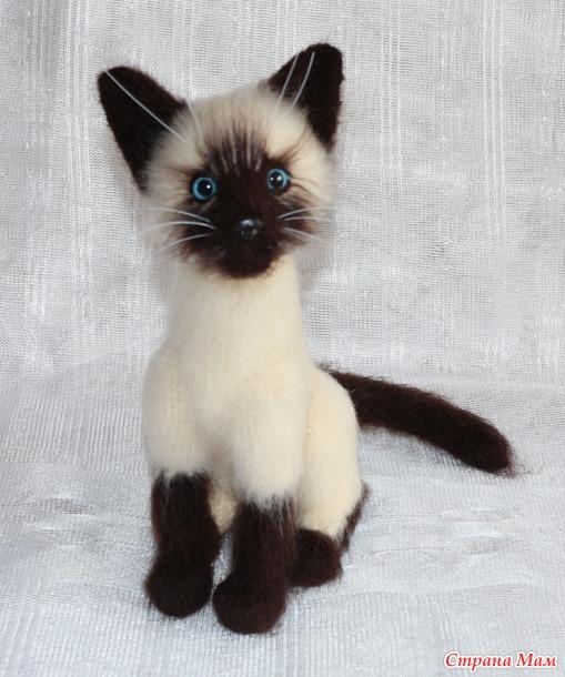 Сиамский котик (видео МК).