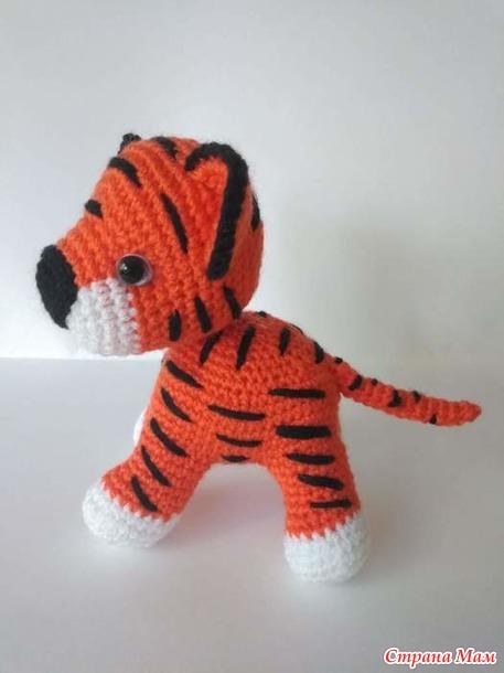 Мои первые тигрята.
